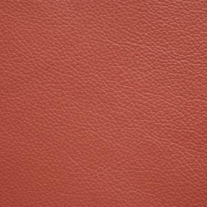 Crimson - Shelly