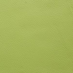 Field Green - Shelly