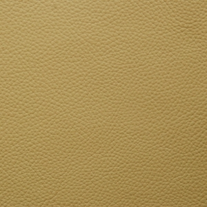 Golders Green - Shelly
