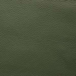 Jade Green - Shelly