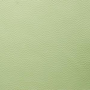 Pea Green - Shelly
