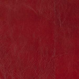 Redcurrant - Heritage
